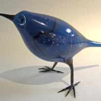 Silver Bluebird